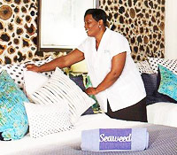Sonia - Housekeeper and Laundress